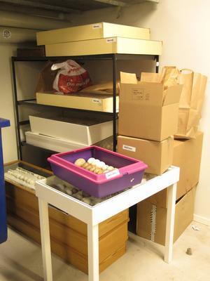 I samlingarna som tagit i beslag finns uppskattningsvis mellan 1200 och 1300 äg och bon.