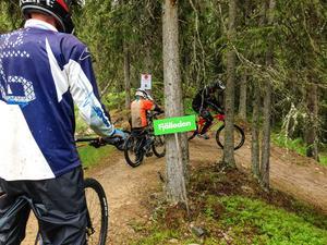 Fjälleden är den lättaste leden som Lofsdalen bikepark erbjuder. Här instruerar Olle Keijser hur killarna lättast behåller balansen och tar sig runt i kurvorna.
