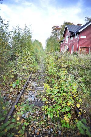 Här, alldeles intill järnvägen, gjorde eleverna de makabra fynden.