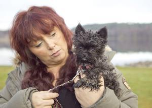 I torsdags fick matte Eva-Lotta veta att Fideli antagits som hundmodell hos en agentur som sysslar med djur.