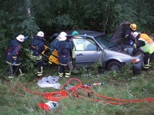 Olycksfärden tog slut vid en skogsdunge. Foto: Mora Brandkår