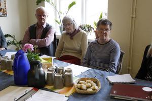 Elving Bolin, Inga-Lill Wall och Ann-Britt Ekh var tre av de anhörigvårdarna som deltog på nätverksträffen.