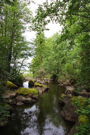 Prunkande grönska vid kanalen som löper längs Kärleksstigen.