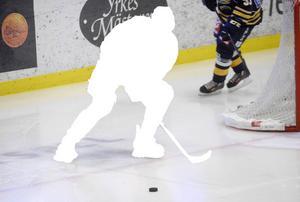 Sundsvall Hockey letar förstärkningar.