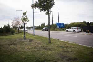 Många trafikanter hade svårt att förstå vart de skulle ta vägen.