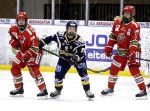 Match mellan Sundsvall och Modo i Riksserien 2014.
