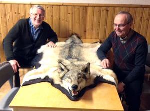 John Ondahl och Göte Rösth låter sig imponeras av den stora vargtik som sköts vid skyddsjakt efter att hon dödat ett antal hundar i Ovanåkers kommun. De föreslår nu i en motion en utredning för en helt oberoende jägarorganisation.