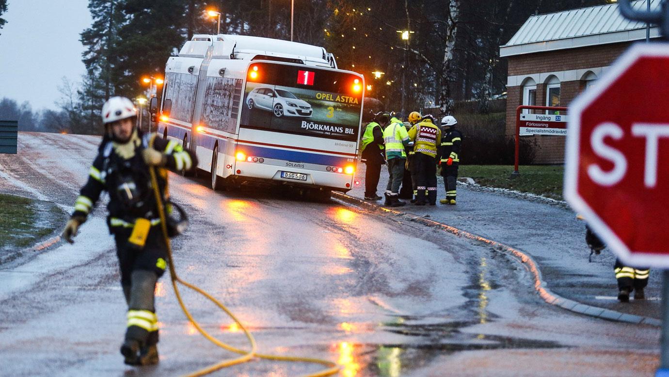 Bilist blev biten av busschauffor