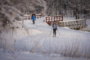 Sundsvalls kommun vill satsa fem miljoner för att göra Sidsjöspåret bättre.