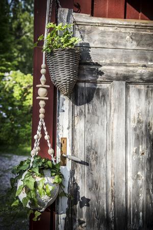 På verandan får en gammal dörr bli fond till hängande växter.