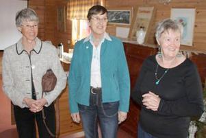 En nöjd arrangör, Barbro Larsson, till höger samt sjuksköterskorna Marianne Fahlskog-Nilsson och Elvi Eskilsson.