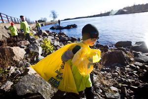 Johan Gustafsson och hans kompisar hugger i ordentligt för att städa Ljusnans strand.
