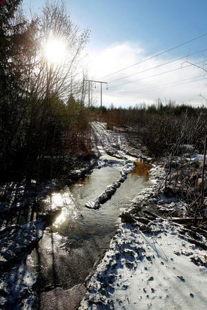 När virket kördes från skogen korsades två bäckar på fyra ställen. Istället för klart vatten är det nu lervatten som spridit sig 100 meter nedström.