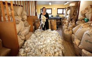Sonia i huset där ullen sorteras. Framför henne ligger ull till 60 kilo garn som ska skickas till Japan. Foto: Johnny Fredborg