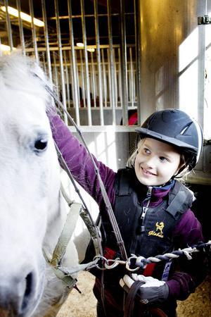 Äldst och minst av hästarna är ponnyn Stig Vig, 27 år gammal.