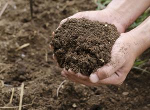 Alla jordar går att förbättra. Syftet är att öka jordens chanser att hålla fukt, näring och luft - i lagom dos.