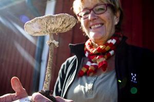 Svampkonsulent Anita Östlund svarade på besökarnas svampfunderingar. Hennes egen favoritsvamp är