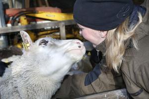Att förena sitt största intresse, djur, med samhällsnytta är det som har gett Linda Eriksson mest av att vara en blå stjärna. – Jag vill kunna påverka och ta del av samhället, hjälpa till när det behövs.