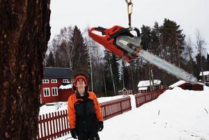 Daniel Bohlin assisterar Roger Andersson uppe i trädet med att bland annat hissa upp motorsågen.