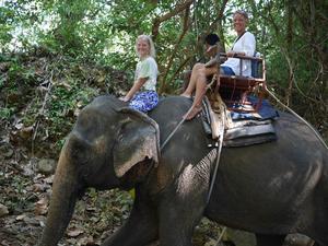 I Koh Chang åkte familjen på en elefanttur med en arrangör som hade en certifiering för god djurhållning.