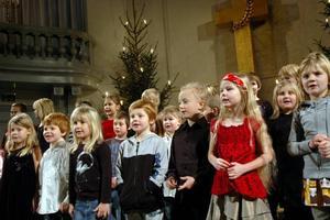 TOMTesång. Eleverna i förskoleklass, ettan och tvåan på Bruksskolan bjöd på en härlig julsång om tomtar.