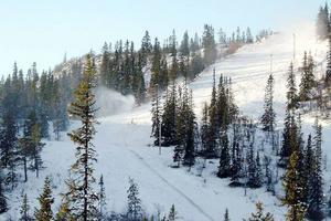 Allt fler är intresserade av fjällstugor på snösäkra Vemdalsskalet.