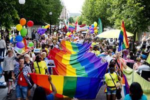 Prideparaden i Sundsvall har slagit rekord år efter år. Så även i fjol.