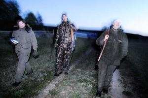 Till slut blir det för mörkt för att kunna fortsätta jakten på räven.