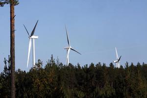 De här vindkraftverken finns på Vårdkasberget i Rogsta. Arkivbild: Stefan Westerlund