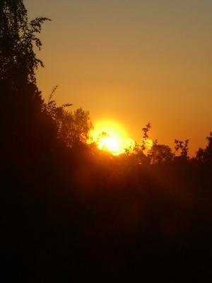 skickar den igen eftersom jag glömde tele nr. på förra. När du inte kan sova en morgon så kan du alltid vila ögonen på en vacker soluppgång. Dessutom ser det ut som 3 solar, på bilden som togs sista maj kl 04.25