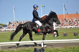 En bild från sommarens SM för islandshästar. Platsen är Norrköping.