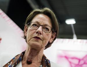 Kan Gudrun Schymans skattepolitik komma till heders i V igen? undrar en hoppfull Karin Pihl.