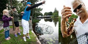 Tre kräftfiskare som fick uppleva Svartåns låga antal kräftor i fredags. Till höger är Karl-Heinz Nilsson.