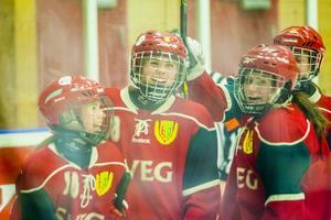 Det blev inte mindre än 19 tillfällen att jubla för Sveg under lördagens hemmamatch mot Falun.