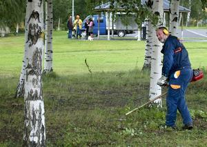 Röjde och städade vid hamnen. Sören Finnström, s, var en av sex politiker som dök upp vid nya hamnen för att städa och röja på helt ideell basis. Han köper Annika Nilssons, m, idé om att försöka locka allmänheten att städa sin egen stad. –Jag tror att det finns ett intresse bland folk att hjälpa till. Det är så enkelt egentligen, och någon kväll kan det ju gå, konstaterade han. Foto:Peter Ohlsson