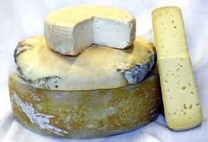 dansk ost svarta sara