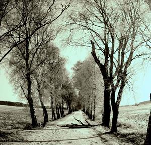 En solig vinterdag i Haraker.