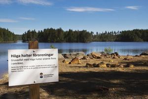 Höjda halter av arsenik har hittats norr och söder om Nedre Skärsjön utanför Riddarhyttan, och det kan bli aktuellt att stängsla in, gräva bort eller täcka över avfallet.