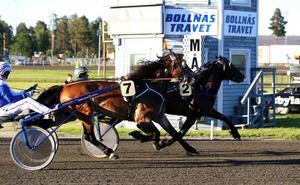 Järvsö Tore och Jan-Olov Persson vann Prinsessan Madeleines Pokal på Bollnästravet på tisdagen.