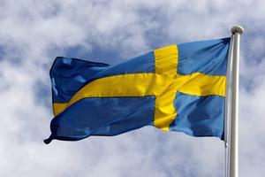 År 1916 blev den 6 juni officiellt Svenska flaggans dag.