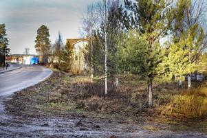 Tomten som Zarox AB har köpt ligger mellan riksvägen och Norrlandsvägen.