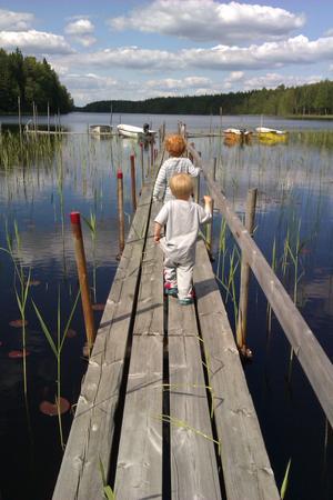 Bröderna Jakob och Anton Bäck ute på bryggan vid sommarstugan i Holsbo. Den svenska vår-sommaren när den är som bäst. Anton (som går sist) tog, ofrivilligt, sitt första bad i sjön efter att ha titta FÖR nära på en skräddare som hoppade runt på vattenytan.