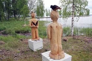 Män som älskar fåglar, av Thorvald Söderblom.