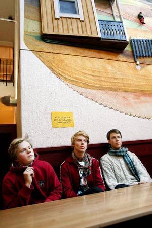 """""""Vi träffas en gång i veckan och umgås         väldigt mycket därutöver. Vi planerar olika aktiviteter och givetvis diverse fester, men inte mer än andra skolelever. Det handlar mer om en social        gemenskap under gymnasieåren, som sedan följer med under hela livet"""", säger Oskar Björk, ordförande i föreningen Alces Alces, Felix Dahlström-       Persson och Felix Starlander, i föreningen Lyran. Foto: Henrik Flygare"""