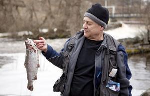 Bengt Hamberg drog upp en regnbåge på drygt ett kilo.