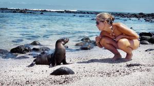 Emelie Edvinsson bekantar sig med ett litet babysjölejon på en strand i San Cristobal i Galapagos.