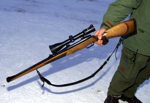 I landet har antalet anmälda jaktbrott fördubblats men i länet minskar det.
