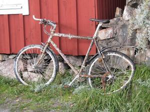 Vad kan denna cykel ha varit med om?