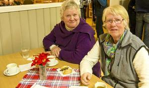 Inga-Lis Sjöberg-Bromée från Klövsjö vill lägga ett större ansvar på turismnäringen att upplysa besökare om vad som gäller. Hon besökte Hedeviken tillsammans med Margarets Zakrisson från Fjällgården.