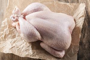 Färsk kyckling är en känd smittkälla för campylobacter. Myndigheterna uppmanar till strikt hygien i köket.  Foto: Shutterstock